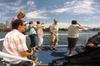 Sydney Harbour Private Tour