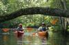 Kayaking on Lofton Creek