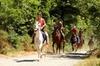 Gita di Mezza Giornata a Cavallo in Toscana