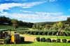 Bickley Valley Wine & Cider Tour - Premium Small Group Tour