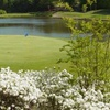 Online Booking - Round of Golf at The Preserve at Verdae Golf Club