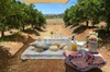 Private Gourmet Picnic Experience at The Orchard Perth