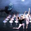 "Russian Grand Ballet Presents ""Swan Lake"" - Monday, Nov. 20, 2017 /..."