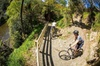 Remutaka Rail Trail Reversi Cycle Tour