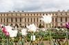 Excursion au château de Versailles avec billet coupe-file pour les ...
