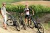 Tour per piccoli gruppi con e-Bike partendo da Siena con degustazio...