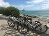 Alquiler de bicicletas Normales