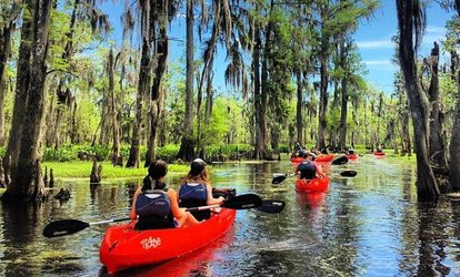 Manchac Swamp Mystic Wildlife Kayak Tour