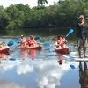 Naples Kayak Mangrove Tour