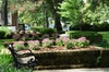 Historic Savannah Walking Tour with Greene Square