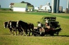 Amish Country Private Tour from New York plus Outlet Shopping