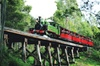 Dandenong Ranges Tour by Puffing Billy Steam Train