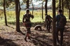 Esperienza di caccia al tartufo con degustazione di vini e pranzo i...