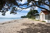 North Auckland - East Coast Sun and Sand Tour