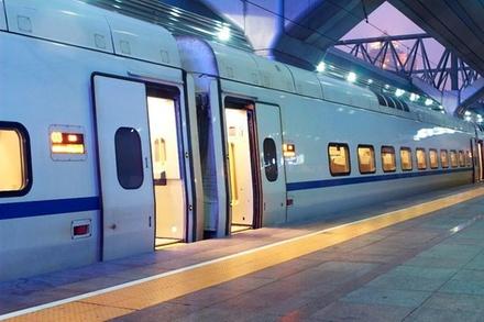 Trasferimento privato all'arrivo: dalla stazione ferroviaria di Rom...