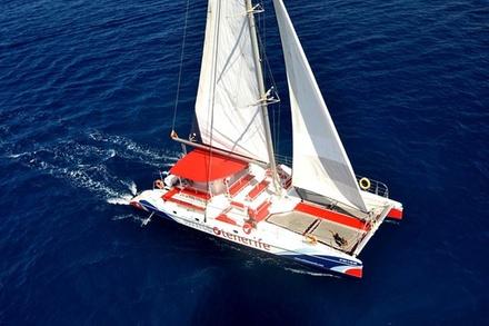 3 horas de observación y escucha de ballenas en un exclusivo catamarán en Tenerife con catering gratuito