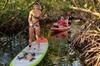 Stand Up Paddleboard or Kayak Tour through the Lido Key Mangrove Tu...