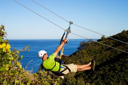 Catalina Island Day Trip from Anaheim or Los Angeles with Zipline Adventure ded956d1-6892-4144-a615-7911134c6c18