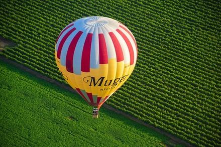 Vuelo en globo sobre los viñedos en la región vinícola de La Rioja