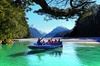 Dart River Jet Boat Ride and Wilderness Jet from Queenstown