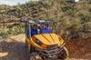 2-Hour Arizona Desert Guided Tour on Teryx UTV