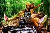 5-in-1 Adventure in Cancun: ATVs, Ziplines, Speed Boat, Snorkel and...