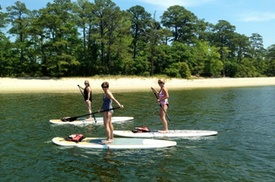 Stand Up Paddleboard Eco-Tour of First Landing State Park at Chesapean Outdoors, plus 6.0% Cash Back from Ebates.