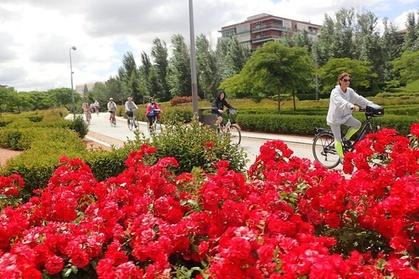 Recorrido en bicicleta por los parques y el río de Madrid Oferta en Groupon