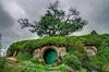 Waitomo and Hobbiton Movie Set Day Tour
