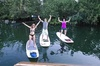 Wildlife Sightseeing with All Day Stand up Paddleboard Rental