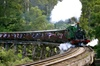 Private Dandenong Ranges Tour including Puffing Billy