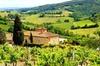 Firenze a Greve in Chianti tour con degustazione di vini