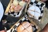 Mornington Peninsula Vegan Food Day Tour