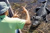 Airboat Ride and Nature Walk with Naturalist in Everglades National...