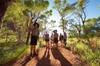 Uluru Small Group Tour including Sunset
