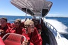 Adventure Rottnest Tour with Ferry & Adventure Cruise from Perth or...