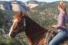 PINE GROVE HORSE TRAIL TOUR
