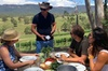 Luxury Blue Mountains Experience with Aussie BBQ lunch