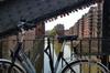 3 in 1: Hafencity, Speicherstadt, Elbphilharmonie