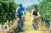 Hawkes Bay Wineries Electric Self-Guided Bike Tour