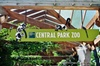 Visit Central Park Zoo & See 30 Top New York Sights (Walking Tour)