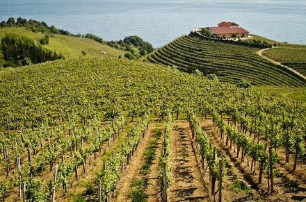 Excursión privada de día completo por el País Vasco, con cata de vinos y quesos desde San Sebastián