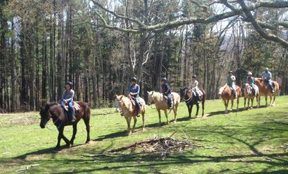 image for Flame Azalea and Fern Forest Combo Horseback Trail Ride