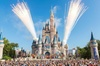 Private VIP tour world Disney Orlando