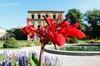 Vieille ville d'Aix-en-Provence classique, son histoire, ses rois, ...