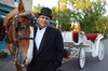 The Hitching Company - Minneapolis / St Paul: Private Horse-Drawn Carriage Tour of Minneapolis