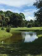 Blue Cypress Golf Club: $16 For One Round Of Golf, Cart Included (Reg. $32)