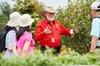 Snapshots of Australia, Australian Garden, Royal Botanic Gardens Cr...