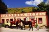 Cardrona High Country Pub Trail Horse Riding Trek