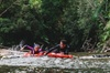 Mossman Gorge Adventure Day